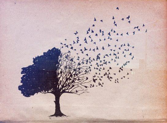 Téngase en cuenta que nada es eterno. Todo se modifica, ni siquiera uno es lo que era ayer. Foto/2.bp.blogspot.com