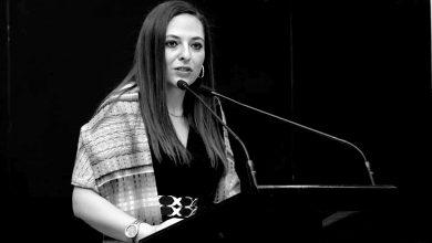 Fabiola Ricci, Legisladora panista. Foto: @FabiolaRicciDiestel